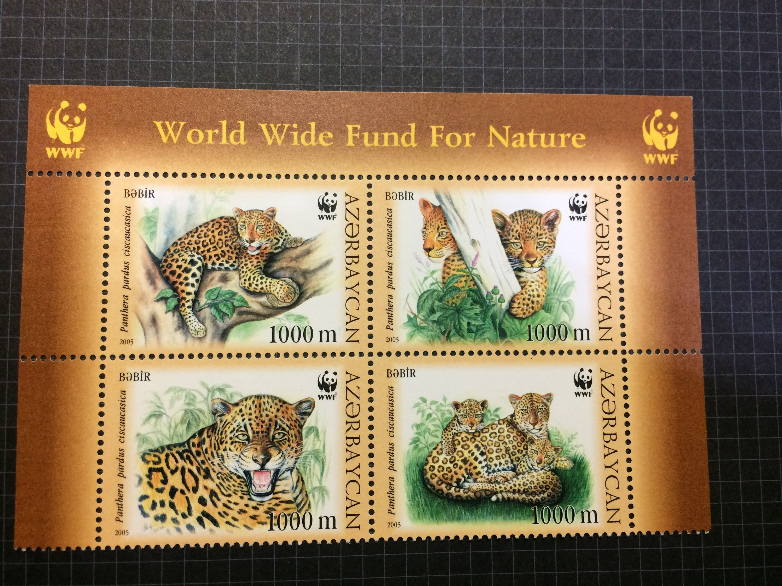 亞塞拜然 WWF花豹郵票四連刷2005年