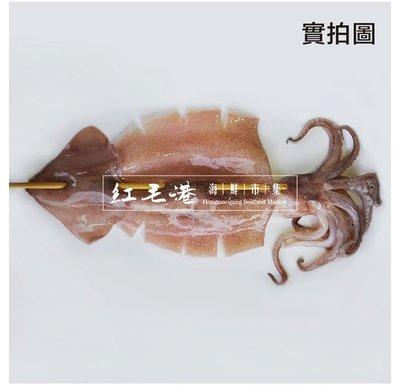 紅毛港海鮮市集 魷魚 魷魚串 30CM/1200g±5%(5隻裝) 現撈急速冷凍 燒烤炸物