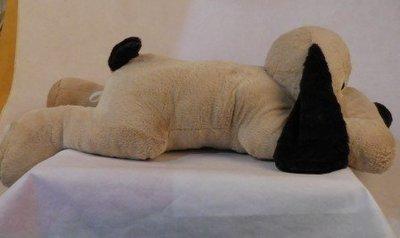 趴地狗 Lying Dog