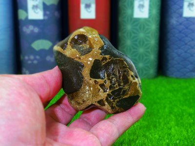 ㊣㊣ 印皇閣 ㊣㊣ 早期私人收藏 - 台灣天然奇石 - 自然成形 - 意形石 - 命名 : 青蛙 (奇-23)