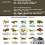 QS。。。青島水族。。。P142佩佩龍Petpetzone-爬蟲T5燈管 沙漠生態適用蘇卡達==UVB/10.0/39W