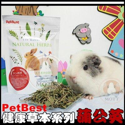 《Life M》【萌寵吃貨】PetBest 100%天然健康草本系列機能性食品-蒲公英