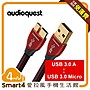 【愛拉風】 Audioquest USB Cinnamon 5.0M ...