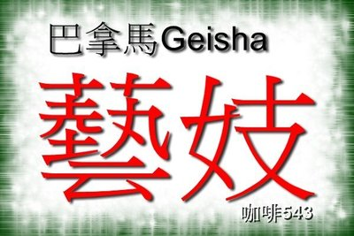 【藝妓咖啡專區】多款任選特價690~衣索比亞~巴拿馬 90+ 藝妓 咖啡 瑰夏 翡翠 莊園 藝技Geisha Gesha
