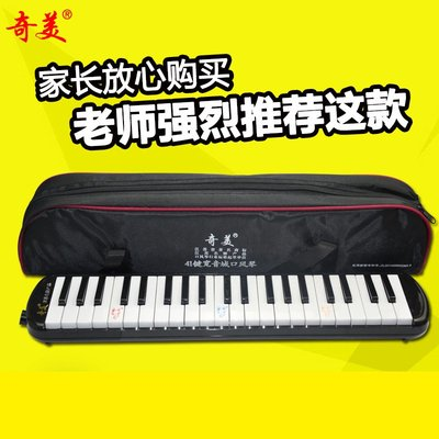 【民族乐器】41鍵寬音域口風琴兒童學生初學者課堂教學送吹管專業演奏樂器 H2280D