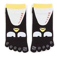 【莓莓小舖】正版 ♥ Sanrio 三麗鷗 成人五趾襪 酷企鵝 五趾襪 五指襪