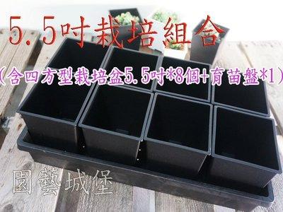 【園藝城堡】5.5吋栽培組合(含四方型栽培盆5.5吋黑色*8個+育苗盤*1個) ※此商品運費適用宅配/貨運