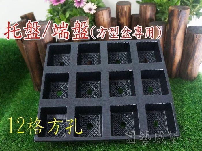 【園藝城堡】托盤、端盤(方型盆專用) ~ 12格方孔