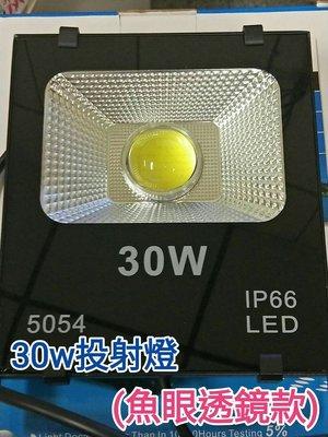 [晁光照明] LED 燈 燈泡 30W+魚眼透鏡(不炫光) LED 投射燈 3000流明 晶芯:美國普瑞 LED燈泡 高雄市