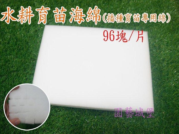 【園藝城堡】水耕育苗海綿 (96塊/片) 播種育苗專用海綿 泡綿