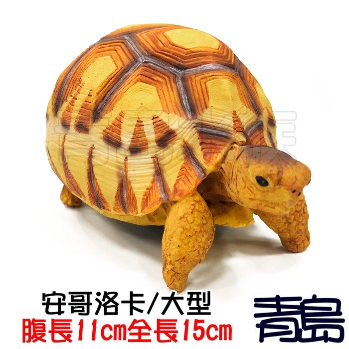 Y。。。青島水族。。。A7中國NOMO諾摩---仿真陸龜模型 3D擬真模型 烏龜/陸龜公仔==安哥洛卡/大型