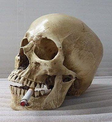 【優上精品】靜物繪畫美術高仿真1:1人類頭骨模型 醫學頭骨 樹脂骷髏頭(Z-P3282)