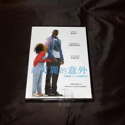 全新影片《最美麗的意外》DVD 雨果傑林 歐馬希 克蕾曼絲波西 安端貝通