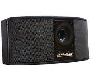 《 南港-傑威爾音響 》Audiofan TK-2101 雙10吋 卡拉OK專用號角喇叭