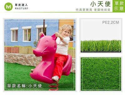 【草皮達人】人工草皮PE-2.2cm 小天使 每平方公尺NT600元(價格已含稅,量大可議) 園藝  幼稚園  遊具