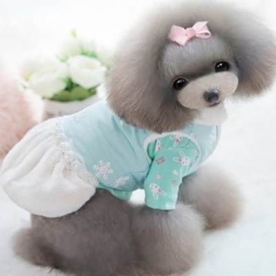 狗狗衣服 秋冬寵物衣-可愛釘珠雪花裙子寵物用品2色73ih95[獨家進口][米蘭精品]