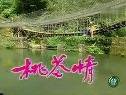 懷舊劇『桃花情』寇世勳 林煒 吳家麗~30集5DVD~下標結標