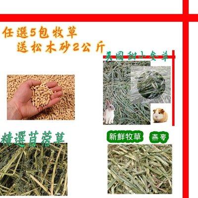 【格瑞特寵物】宅配 送松木砂 天然分裝牧草 苜蓿草 澳洲甜燕麥