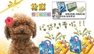 3尺靜電式狗籠+飲水器+白鐵碗架組+狗零食4種商品730元☆米可多寵物精品福袋組☆