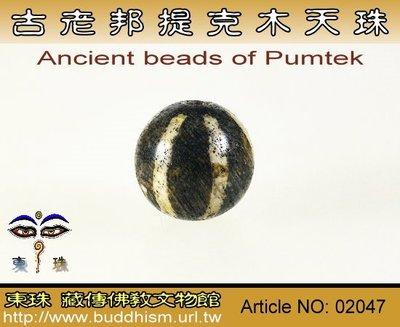【東珠文物】古老喜瑪拉雅邦提克木珠系列。02047