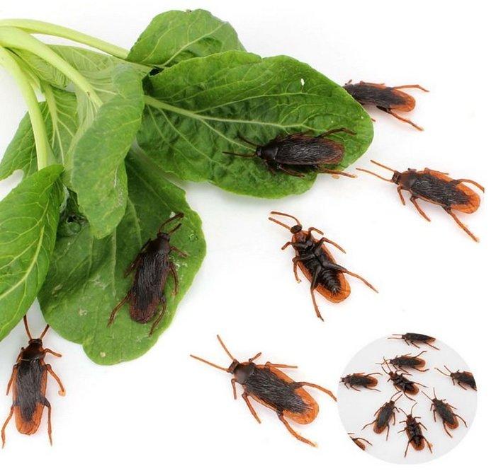吉米生活館 買10送1 仿真蟑螂 假蟑螂 塑膠蟑螂 惡作劇整人蟑螂 假小強 假蝎子 假蒼蠅 假蜈蚣 搞怪整人玩具