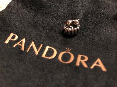 全新專櫃正品 PANDORA  串珠 銀飾 COZY CAT 貓 迷人精緻動物 925純銀 絕版珍藏 墜飾