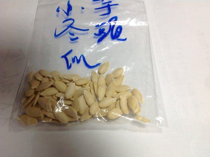 【n0900台灣最便宜】2019芋頭冬瓜種子每包10顆$15(本店種子一律才有機收成不參加任何一滴農藥或藥水可以安心使用