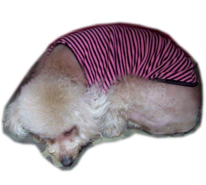 ☆汪喵小舖2店☆ 【免運費】 LOVE FIVE 寵物遠紅外線蓄熱保暖衣7號 // 台灣製造