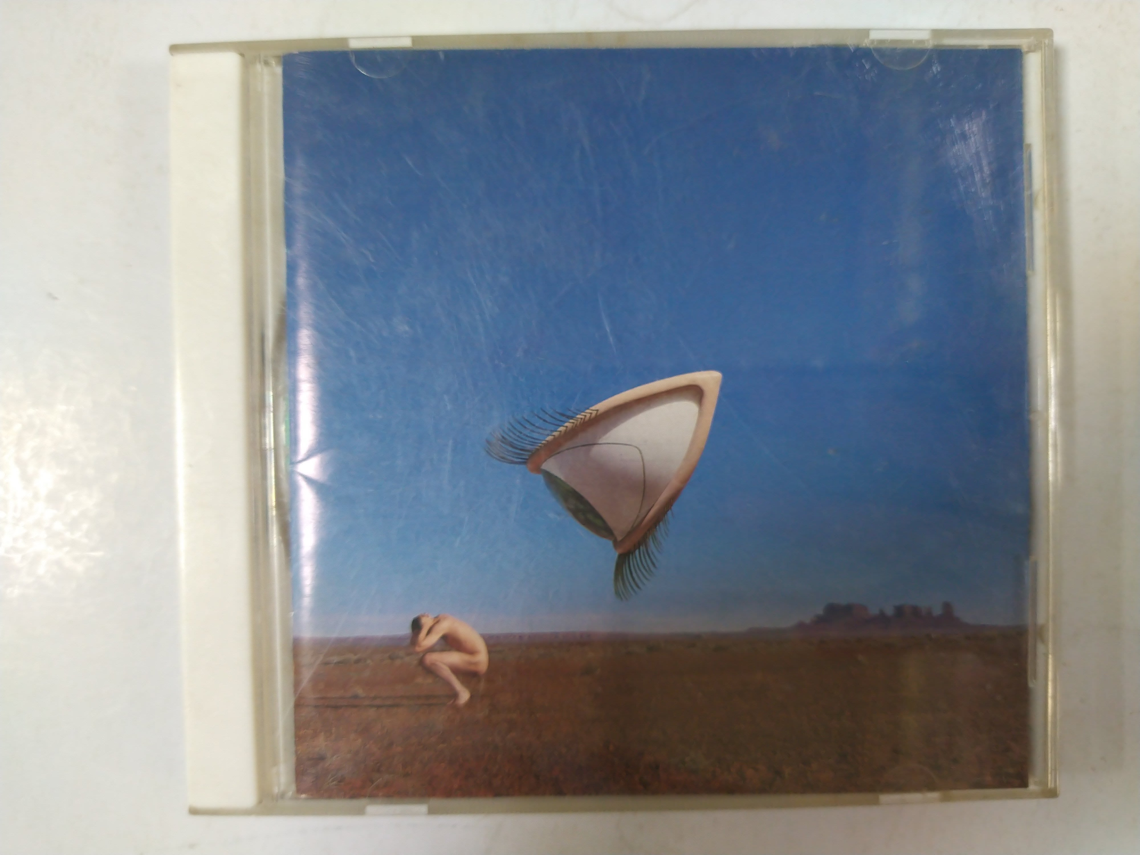 昀嫣音樂(CD6) THE CRANBERRIES : BURY THE HATCHET 1999年 EU壓片 片況如圖