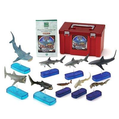 日本正版 立體圖鑑擬真模型BOX 鯊魚DX 9種組 小模型 小公仔 日本代購