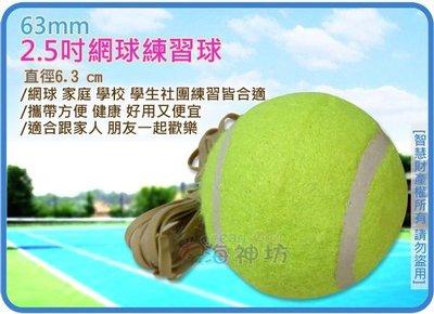 =海神坊=2.5吋網球練習球 63mm 網球 家庭 學校 學生社團練習 戶外 運動 初學者專用 120入3500元免運