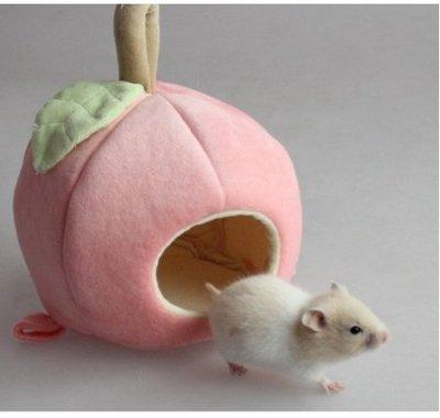【🐱🐶培菓寵物48H出貨🐰🐹】DYY》寵物窩倉鼠天竺鼠保暖可愛水果棉睡窩含睡墊特價199元