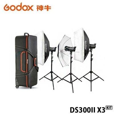 【EC數位】GODOX 神牛 DS30...