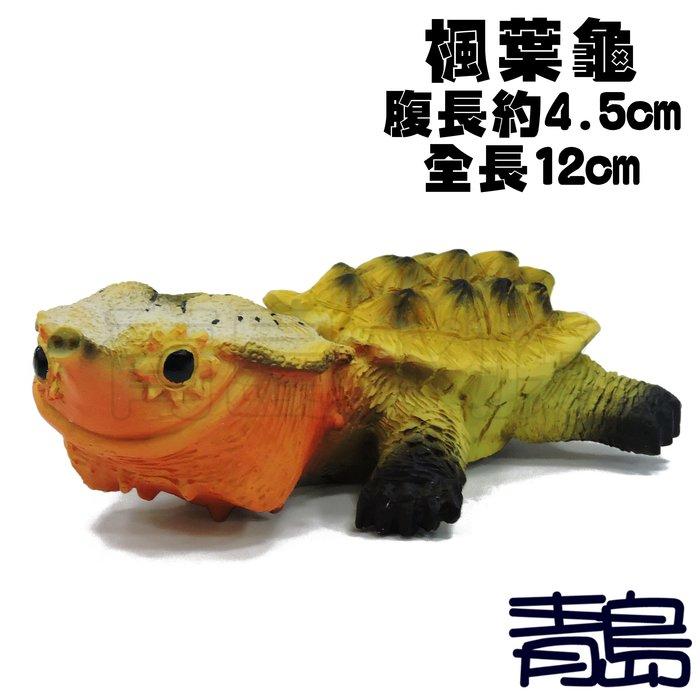 YU。。。青島水族。。。TQ-04手工原創 仿真陸龜模型 3D擬真模型 陸龜公仔 澤龜水龜烏龜瑪塔枯葉龜==Q版/楓葉龜