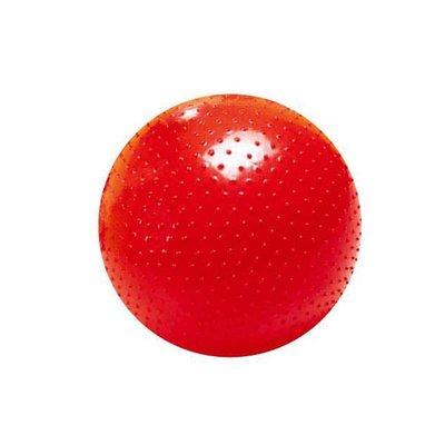 【晴晴百寶盒】台灣品牌 大觸覺球/環保 WISDOM  觸感統感 教具益智遊戲 環保無毒玩具 檢驗合格 W912