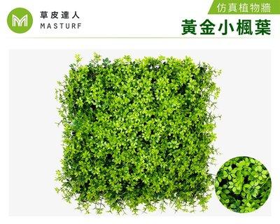 【草皮達人】黃金小楓葉-大片裝 仿真植物牆(350元/片,整箱10片特價3300含運 大片50cmx50cm)