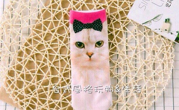 貓咪襪蝴蝶結貓短襪貓咪喵星人帆船襪