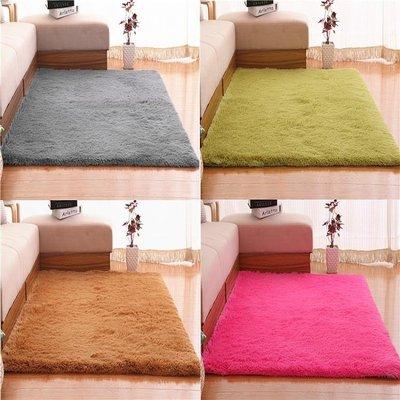 地毯 可水洗絲毛客廳沙發茶幾臥室地毯飄窗床邊毯滿鋪榻榻米YSY