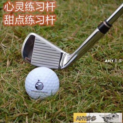 高爾夫球桿 日本原裝 LEEWAY高爾夫練習桿 7號球桿 七號鐵桿 車載防身 鋼桿身-AHY多多