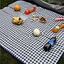 (大款)格子野餐墊【NT128】口袋 便攜 輕便 地墊 迷你 折疊 沙灘墊 戶外手提牛津布防水