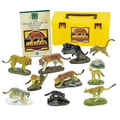 日本正版 立體圖鑑擬真模型BOX 貓科動物 10種組 小模型 小公仔 日本代購