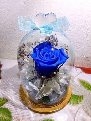 (特價中)保鮮花,永生生,真花,玫瑰花,禮物