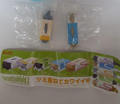 正版club奇譚俱樂部扭蛋 面紙盒中的摺耳貓P2紙巾盒貓咪擺飾 現貨