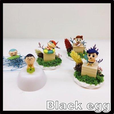 【Black egg 黑蛋】現貨 BANDAI 蠟筆小新玩水隊公仔 扭蛋 轉蛋 收藏 娛樂 全5種