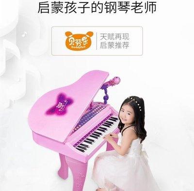 ZIHOPE 兒童電子琴話筒音樂寶寶玩具小鋼琴3-6歲女孩初學ZI812