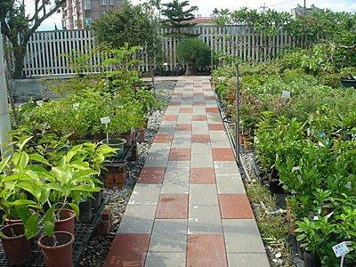 【路卡傢飾~園藝造景】庭園設計 平板磚  水泥板  步道磚 擺飾磚 石板 地磚 噴砂磚