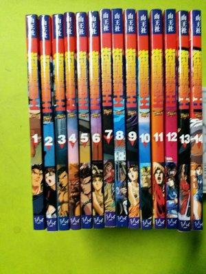 街頭霸王STREETFlGHTER 2 (1~14册完)1997年1月初版 全書彩色粉紙印刷 保存極新 冇甩頁)
