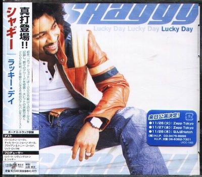 K - Shaggy - Lucky Day - 日版+1BONUS - NEW