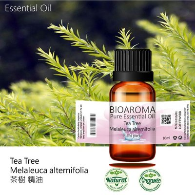 【純露工坊】茶樹精油Tea Tree - Melaleuca alternifolia  10ml