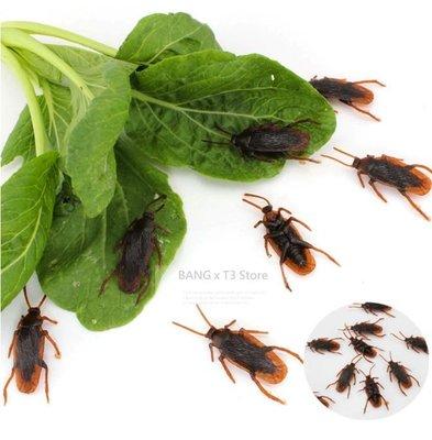 假蟑螂 仿真蟑螂 塑膠蟑螂 整人蟑螂 逼真假蟑螂 小強 愚人節 小禮物【HT61】